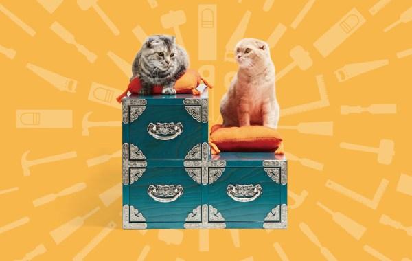 ついに収納家具までネコ仕様に、猫用サイズの階段箪笥が爆誕