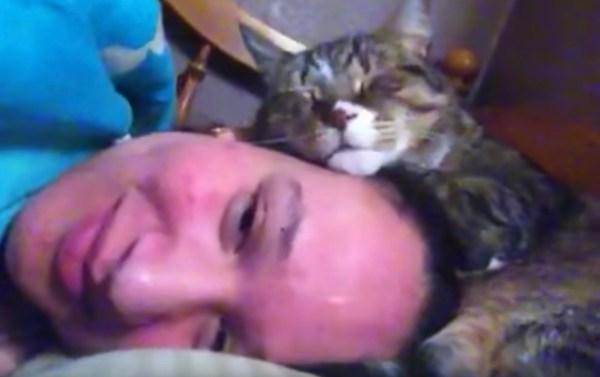顔を寄せ猫は眠るよ人を枕に、伝わる温もり寝息とともに