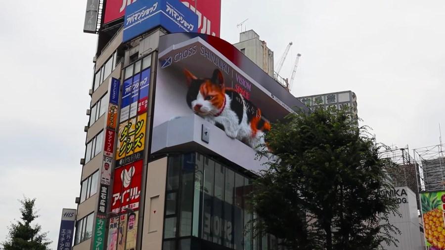 21070602cat 1024x576 - 新宿駅東口前に巨大三毛猫登場、うちの子に似ているとのレスが続々