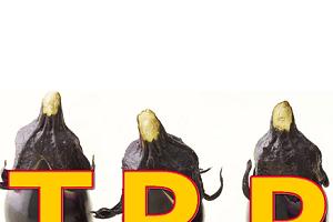 【TPP】小学生でも分かるTPPの基礎知識と最近の動向【2014年9月】