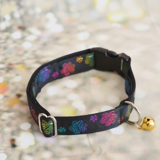 buckle collar - Pride Dog