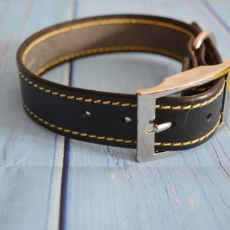 Leather BDSM buckle collar - Yellow Delight