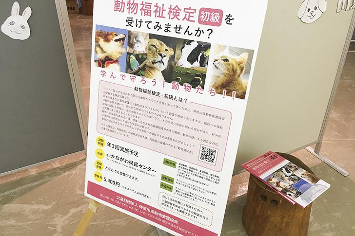 動物福祉検定初級のパネル