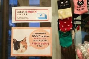 猫助けの貼り紙