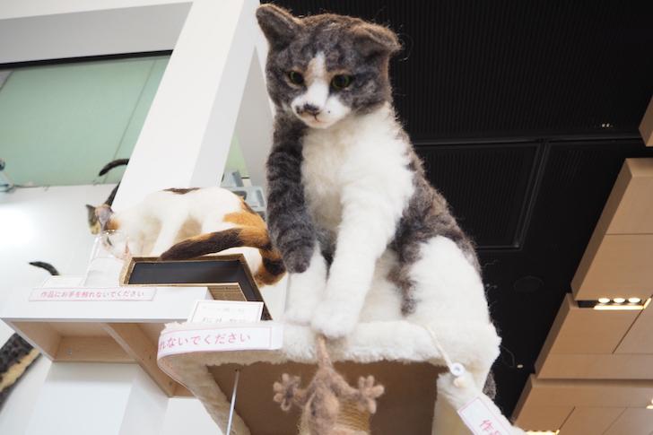 生き生きとした猫