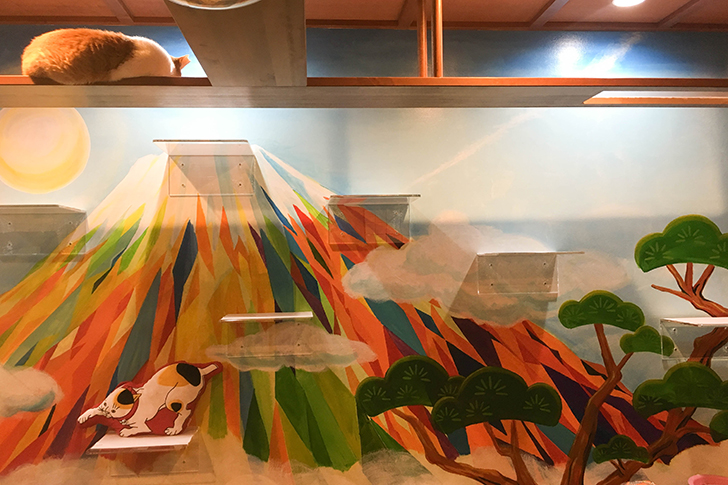 富士山の壁画と猫