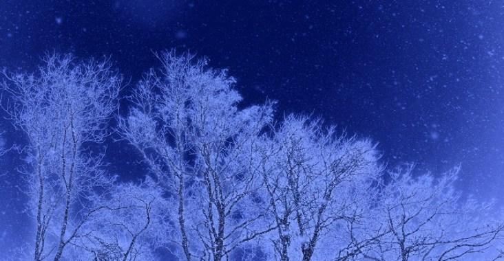 樹氷の夜に