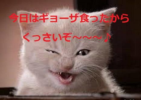 2015_05_04_猫の口臭対策