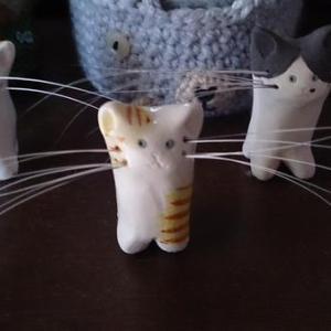 【幸運のアイテム☆】もう迷わない!猫の「抜けひげ」保管方法まとめ