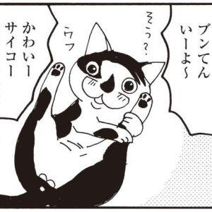 大人気漫画家の猫ぐらしが面白すぎっ!いくえみ綾の『そろえてちょうだい』