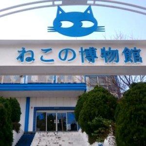 【GWに連れてって!】伊豆高原にある「ねこの博物館」は、ねこ好きさんキュンキュンのねこ萌スポット♡