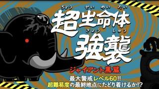 レベル40 ステータス ネコムート 【にゃんこ大戦争】EXキャラの限界突破オススメは?