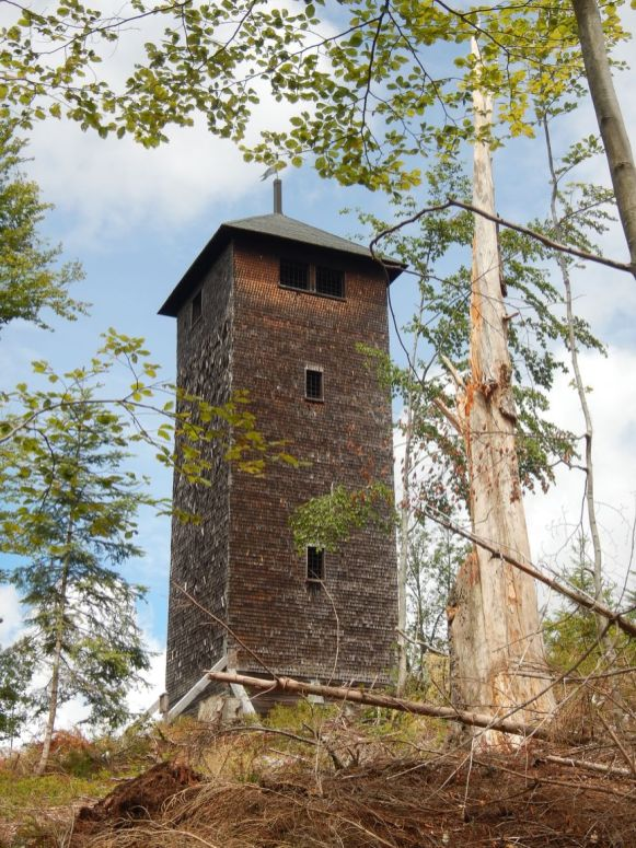 Der Lehenkopfturm oberhalb von St. Blasien