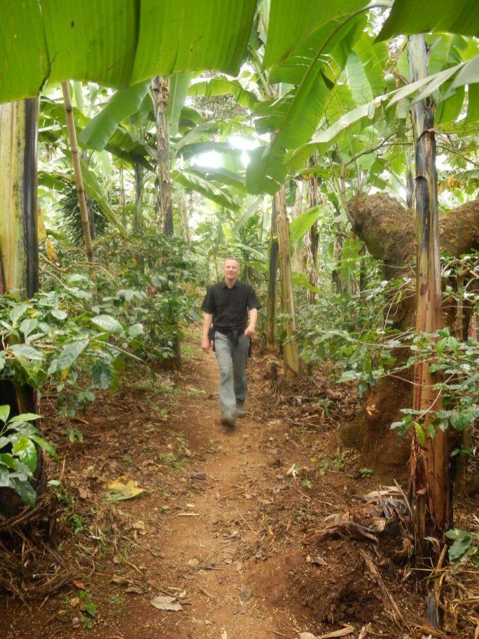 In einer Bananenplantage in der Nähe von Moshi