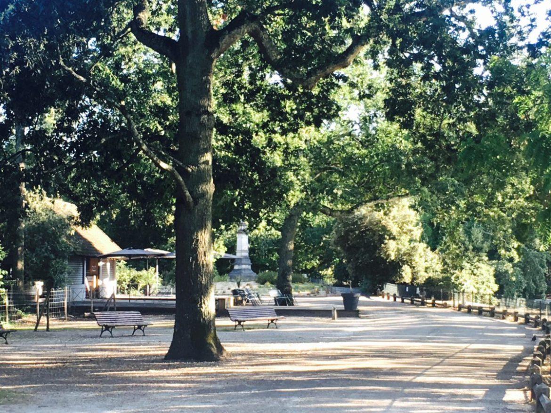 La buvette du Parc Bordelais - Café kids friendly à Bordeaux - 5 terrasses bordelaises à faire en poussette - Blog Bordeaux Ne le dites a Personne #parcbordelais #bordeaux #kidsfriendly #terrassesbordeaux #blogbordeaux #blogmaman #neleditesapersonne