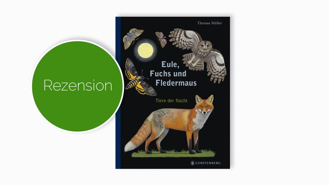 Cover vom Kindersachbuch Eule, Fuchs und Fledermaus