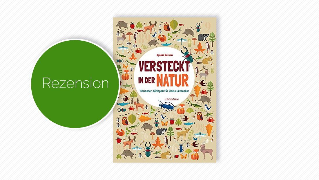 """Buchcover vom Zählspaßbuch """"Versteckt in der Natur: Tierischer Zählspaß für kleine Entdecker"""""""
