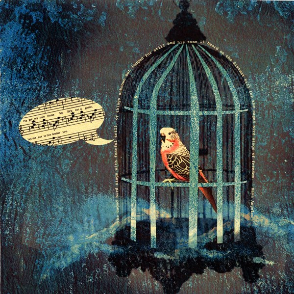 Caged Bird Life A Nelipot Perspective