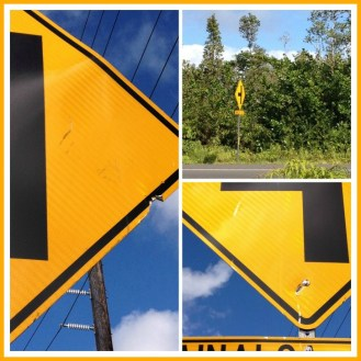 yellow sign --黄色い標識