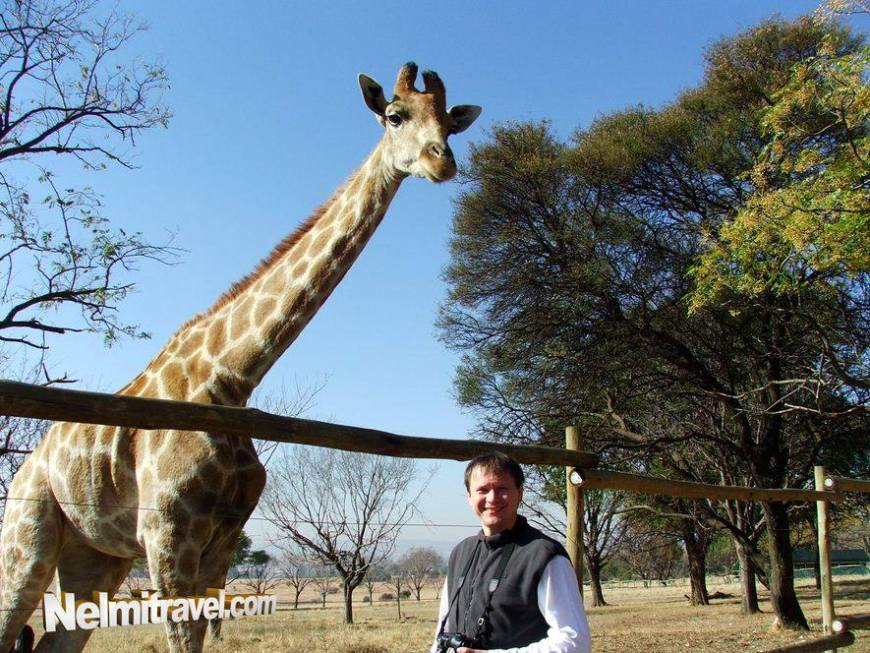 Andrey standing close to a giraffe.
