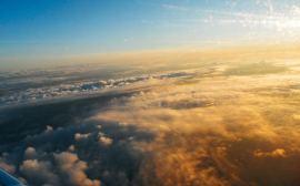 Whiskr; Nelmitravel; Flight Deals; Cheap Flights with Whiskr;