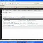 WordPress 2.5 RC2