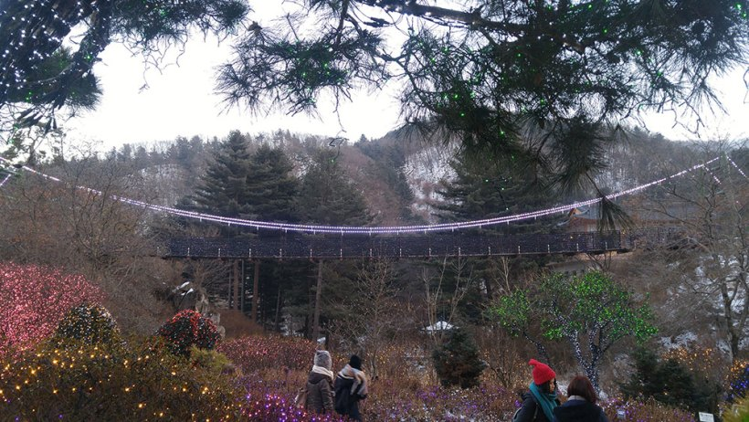 A suspended bridge at the Garden of the Morning Calm