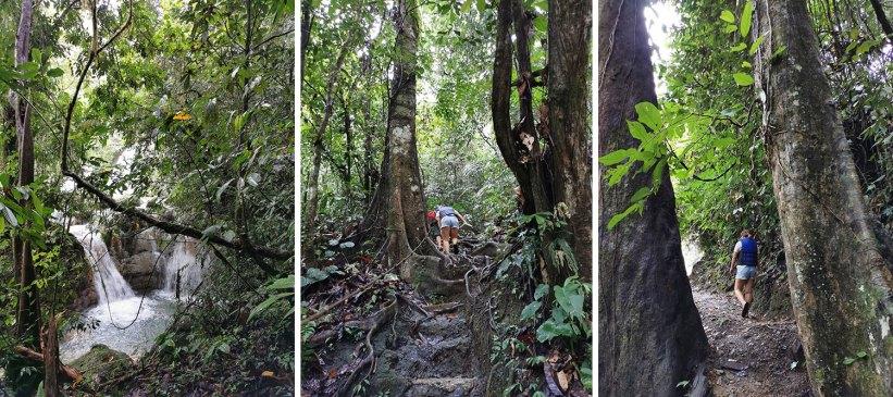 Walk to Bega Falls: Level 3