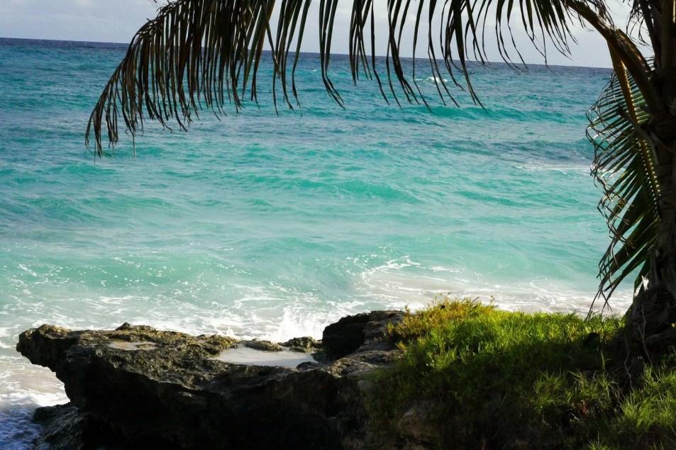 Nelson_Carvalheiro_Barbados