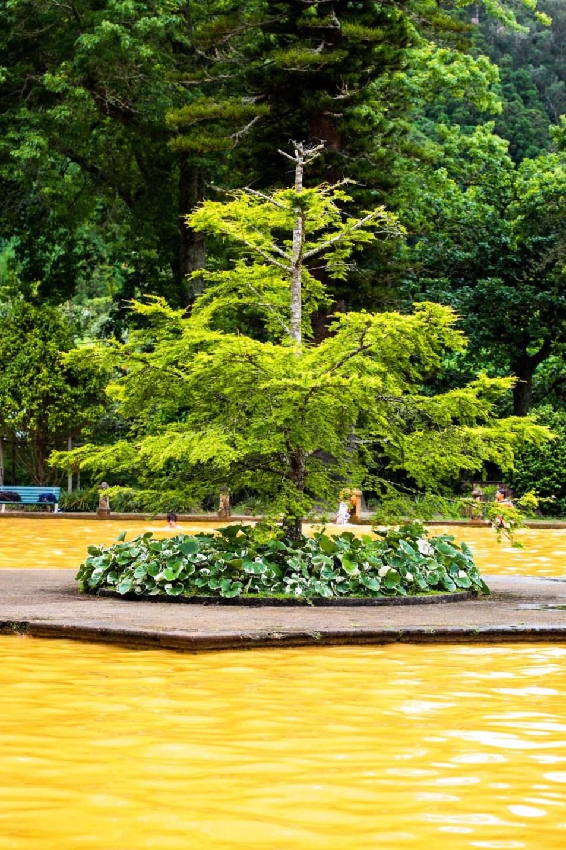 Nelson_Carvalheiro_Santa Barbara Eco-Beach Resort_Maria_Braga_tanque de água termal do jardim Terra nostra