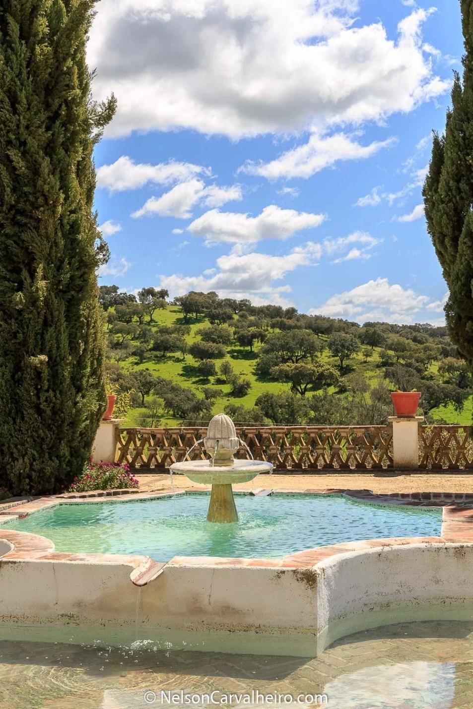 Nelson_Carvalheiro_Alentejo_Wine_Travel_Guide_Monte_Ravasqueira-25