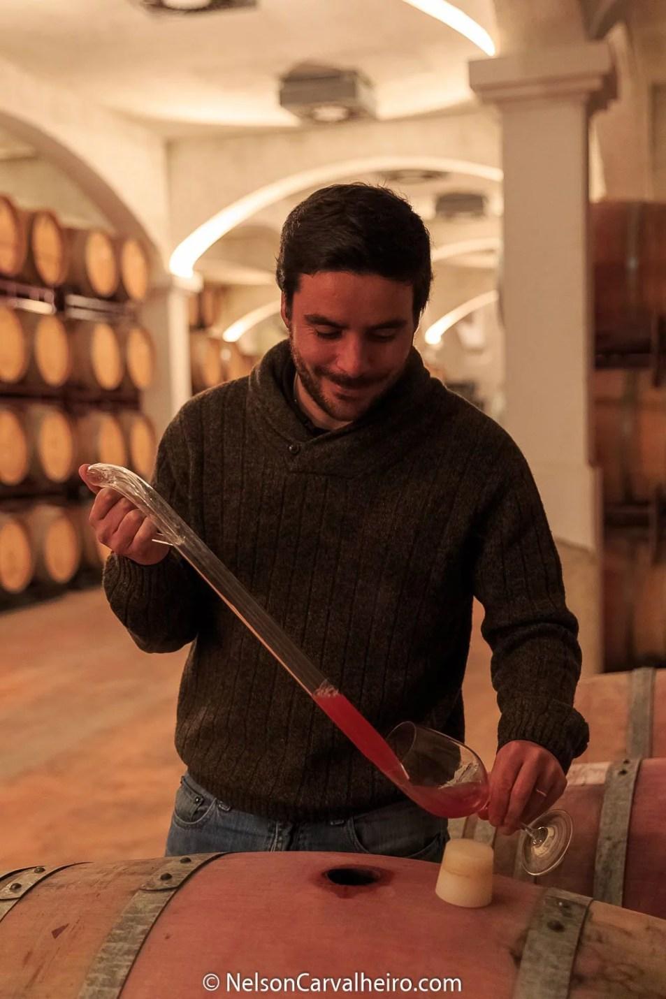 Nelson_Carvalheiro_Alentejo_Wine_Travel_Guide_Monte_Ravasqueira-30