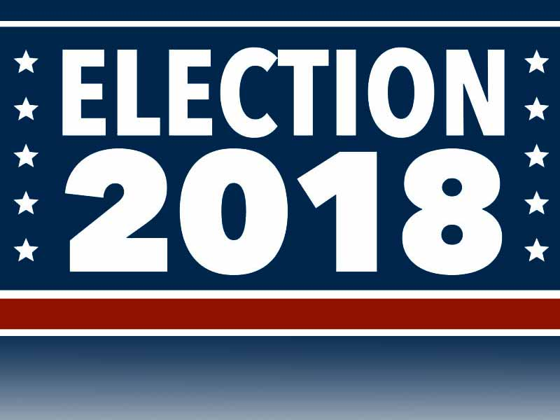 Image result for election 2018 images
