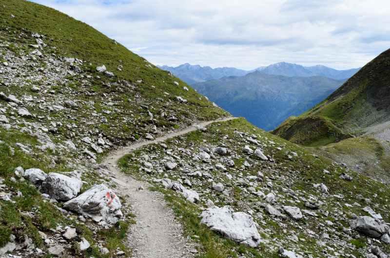 rocks beside path