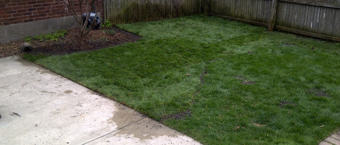 Commercial Landscaping And Lawn Maintenance Milwaukee