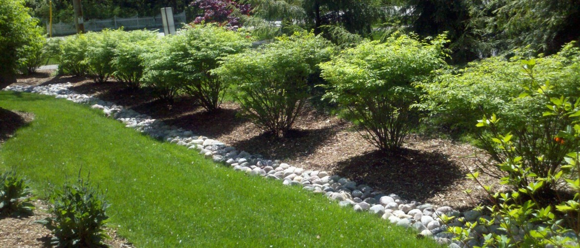 Landscape Design, Trees, Shrubs, Pruning, Milwaukee Landscaping, Mequon Landscapers