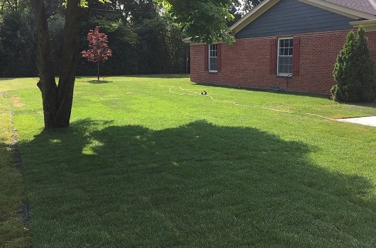 sod installation Archives - Mequon Landscaping   Milwaukee