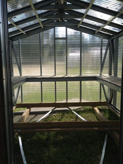 Greenhouse Inside Structure Gainesville FL