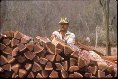 Paraguay, el Chaco, Estancia ganadera. Trabajador temporal, leñador.