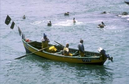Chile, Valparaiso, cala Membrillo, pescadores, trabajo