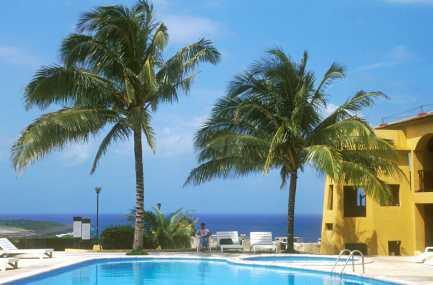 Cuba, Baracoa, hotel El Castillo.palmeras, árbol