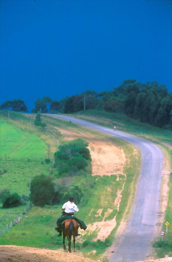 Uruguay, Dp, Maldonado, carretera, Gaucho