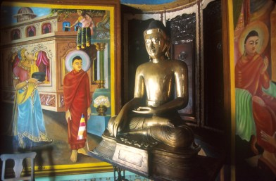 Sri Lanka, Colombo, templo Simamalakae