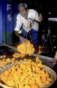 India, Mysore, Fiesta de Dussehra, Karnataka, mercado de guirnaldas, retrato