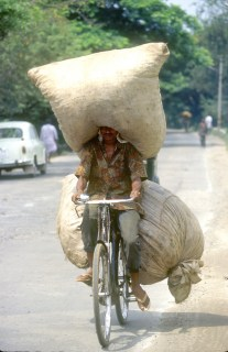 India, Mysore, Fiesta de Dussehra, Karnataka, ciclista, sobrecargada, bicicleta