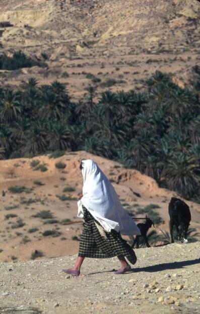Túnez, Gran Sur, el Halouf, Ksar, señora caminado