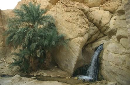 Túnez, oasis de montaña, Chebika, cascada