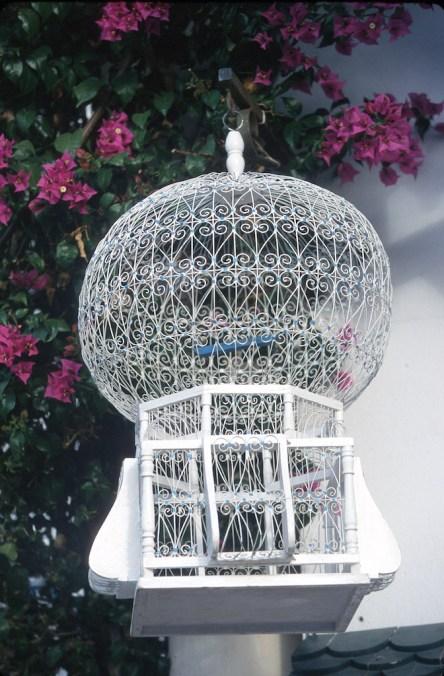 Túnez, Sidi Bou Said, jaula de pájaros