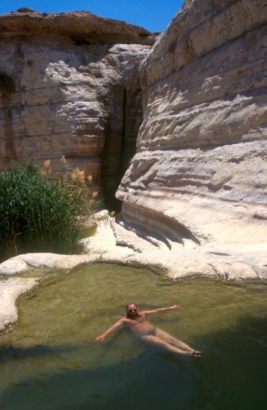 Israel, desierto del Negev, valle del Zin, manantial, sr