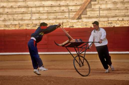 España, Cordoba, escuela taurina, toros